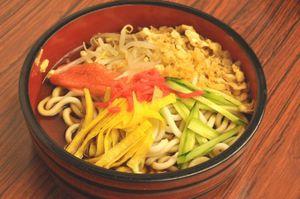 20090710_hiyashikitsune