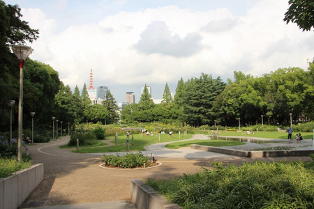 Photo_17